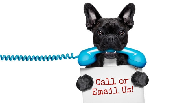 call-or-email